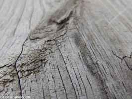 Woodgrain by cedarlili