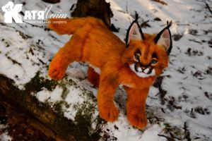 Caracal Valentine by KatiaLeyt