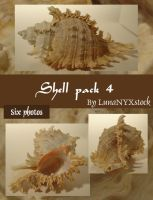 Shell pack - 4 by LunaNYXstock