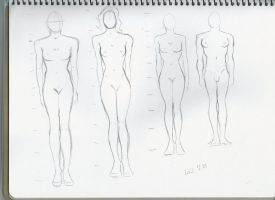 Body structure practice 8 by sophiaan0