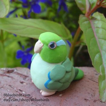 Celestial Parrotlet by The-Wandering-Bird