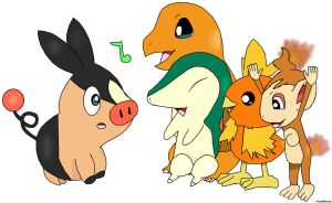 Tepig Welcome