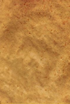 Parchment Paper 7 by Steamrider86