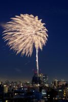 Japan Fireworks - Warimono by kucingitem