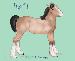 Foal- RANSOME by patchesofheaven74