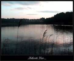 LakeSideView by disturbed