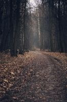 Autumn Last Moment by Snowfall-lullaby