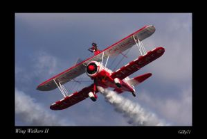 Wing Walkers II by Gilly71