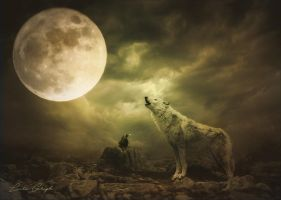 Le hurlement du loup by Laura-Graph