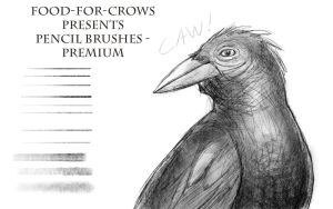 Pencil Brushes - Premium by Food-For-Crows