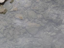 Shallow Water with Rocks 2 by RosalineStock