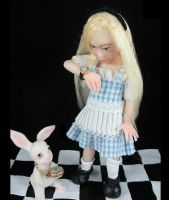 Alice in Wonderland. by Fairykist