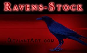 Ravens-Stock ID by Ravens-Stock