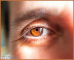 The most beautiful eye by curtition