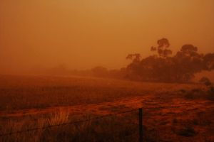 Dust Storm by Offering