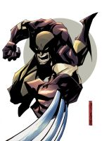 wolverine sketch by johnnymorbius