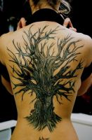 dry tree tatoo by hurray