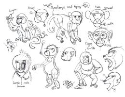 Draw Monkeys and Apes 1 by Diana-Huang