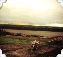 Seneca Lake taken from one of the winery's by Shannon-K