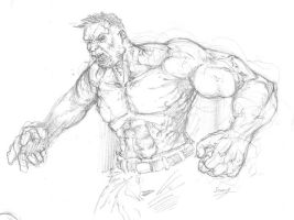 the hulk first try by SannyF