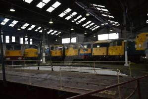 Barrow Hill Roundhouse [1] by DingRawD
