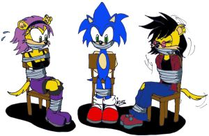 AT: Sonic Team Captured by Levvvar