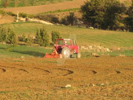 Little Red Tractor by Maltese-Naturalist