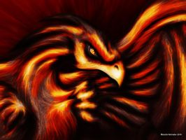 another phoenix by Symbiot2006