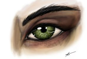 The slave`s eye by SessaV