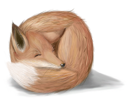 Realistic Fox by Psunna