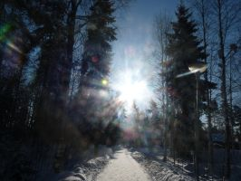 Winter Shines (Finland) by Anri82