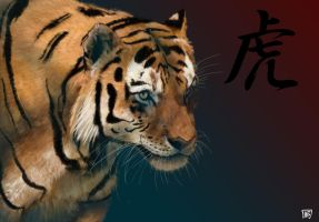 Tiger by Wilmar-Ballespi