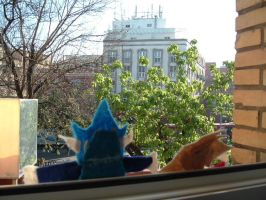 Out the Window 2 by whiterabbit1613