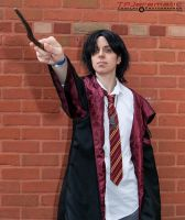 ALCON Young Sirius Black 3 by TPJerematic