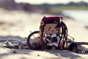 36-52 CTL2013 - Cpt. Lilly Sparrow by FeliDae84