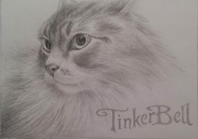 Portrait of my good friends companion by TheMajesticCarnival