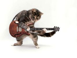 Cat Guitar by Archaic-Artist