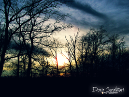 Vernal day, with a sunset by szdora91