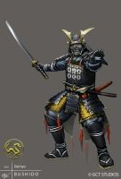 Ashigaru - Daimyo by dinmoney