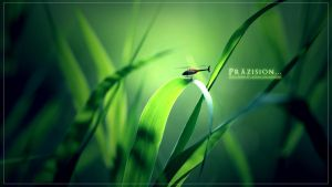 Helicopter Green Leaves by SickzzOne