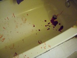 Tub after Blood Staining a T-Shirt by Phycosmiley