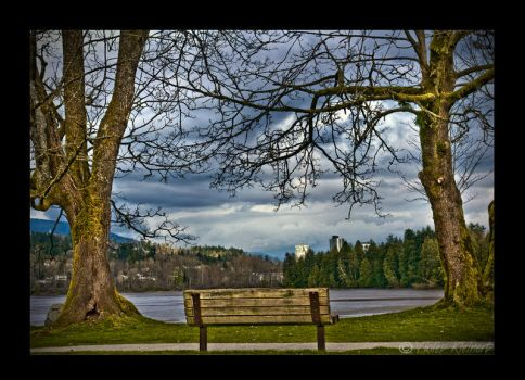 The Bench by Violet-Kleinert