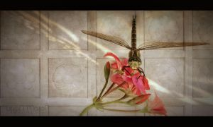 dragonfly_3 by LeronMasoN