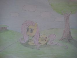 fluttershy with bakground by beginerbrony