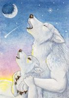 His First Winter Howl by Yote