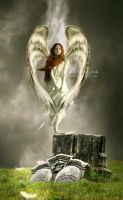 3 -  Angel by Jaagaa