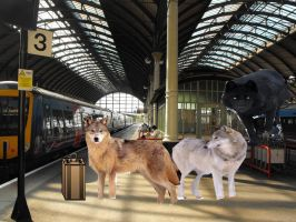 Train Station by mansell379