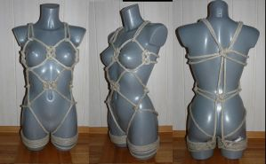 Harness 1 by 18Sieben
