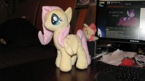 #1 FlutterShy plushie by BlondeauJ
