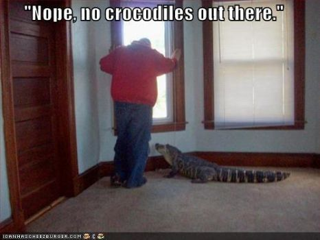 Crocodile... where? by Shquiggles